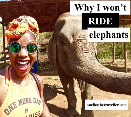 why i wont ride elephants